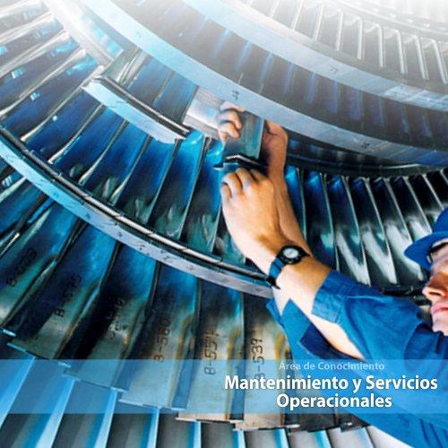 Mantenimiento y Servicios Operacionales